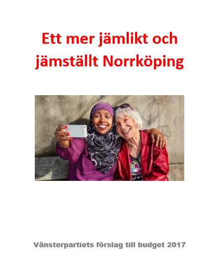 visnbudget17